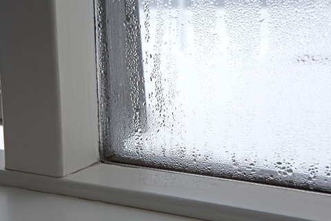 Condensation on your windows can be an indication the humidity in your home is off.